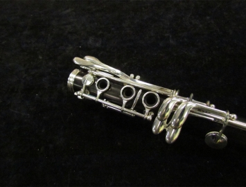 Photo New Buffet Crampon R-13 Professional Clarinet in A
