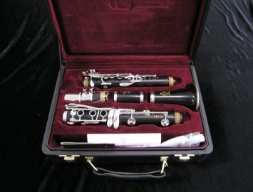 Photo New Buffet Crampon R-13 Green Line Professional Bb Clarinet